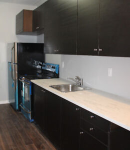 Bright, Newly Renovated 2 Bedroom w/ Parking
