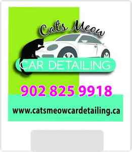 Annapolis Valley Mobile Car Detailing