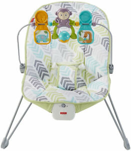 Brand new Fisher Price Baby bouncer! Green Blue and Grey pattern