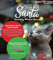 Whisker Rescue  Pet Photo with Santa