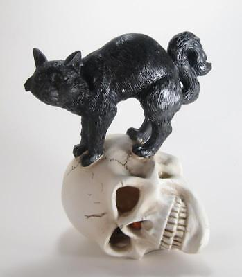 Black Cat Standing on Skull with Lighted Eyes Halloween Figurine 8