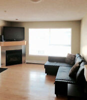 Modern Fully Furnished Condo Beside MRU Available Immediately