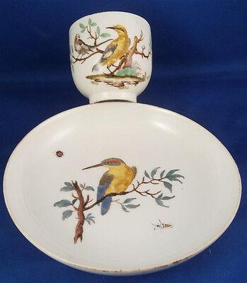 Rare 18thC Meissen Porcelain Kingfisher Bird Scene Cup & Saucer Porzellan Tasse