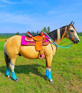 ISO: 1 inch thick IMPACT GEL SADDLE PAD