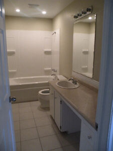 2 Bedroom flat on Kingsmere ct Fairview avail March 1