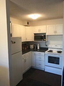 Downtown 1 BR Apartment