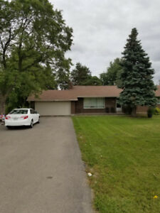 Bungalow House for Rent at Mayfield/HWY 10 Brampton