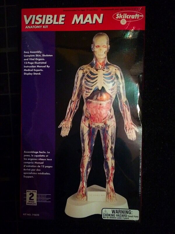 Vintage 1984 Skilcraft VISIBLE MAN Anatomy Kit sealed Excellent ...