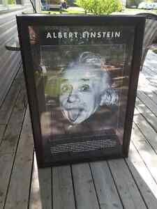 Alberta Einstein picture