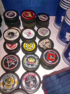 Puck Collection for sale Over 1,000 pucks City of Toronto Toronto (GTA) image 1