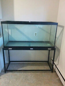 90 gallon tank with stand London Ontario image 1
