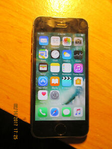 apple iphone 5s 6 months old come with charger ,case in mint con