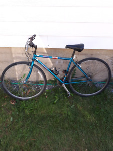 Bicycle Norco a 45 dollars!