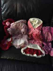 Lot of female dog clothes size L