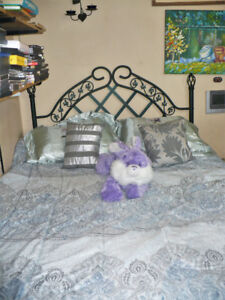 furnished rooms for rent at the Purple Dragon