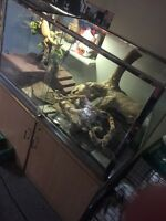 Reptile enclosure price reduced