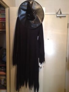 Adult witch costumes  Kitchener / Waterloo Kitchener Area image 1