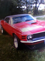 classic stang beautifull car 302 f code car