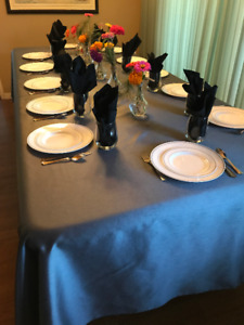 table cloths and cloth napkins- black or silver