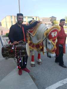 DHOL PLAYER FOR ALL OCCASIONS