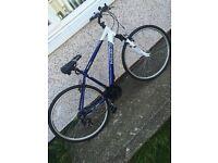 Integer hybrid bike