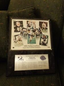 Dallas Cowboys 1993 Champ mounted  photo stats