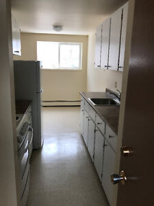large 2 bedroom, 2 bathrooms newly renovated