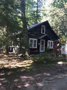 Charming Log Cabin for RENT in Balm Beach