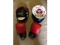 A PAIR OF RDX TARGET PADS WITH A PAIR OF BOXING GLOVES