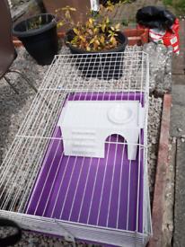 Cage rabbit/Guinea pig