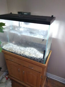 Selling 37 gallon tank with wooden stand new lid with led lights