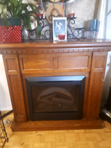 Electic Fire Place