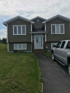FOR RENT   70 Discovery Crescent, Paradise   $1450/month POU