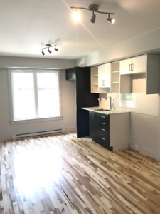 Newly Renovated 1 Bedroom Suites