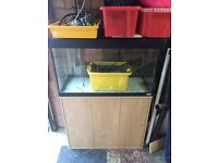 Fish Tank and Cabinet Fluval Roma 125 L