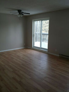 Nice two-bedroom apartment available in Huntsville