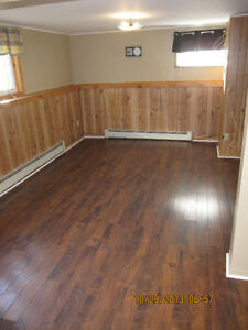 Large 2 bedroom near CONA and YMCA at 116 Higgins Line