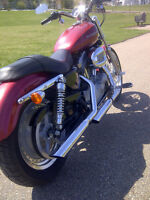 2004 Harley Davidson Sportster / Fantastic Condition