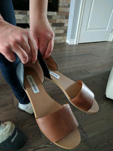 Shoes . Steve Madden