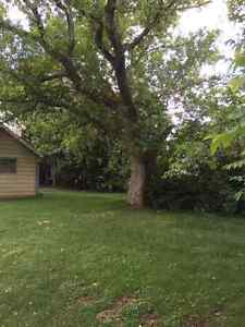Fully renovated 3 bedroom house for rent in beautiful Almonte