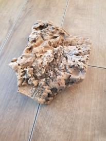Reptile wood