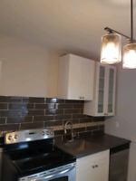 1 Bedroom, private laundry & 1 car parking in Downtown Hamilton Hamilton Ontario Preview