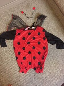 Child's lady bug costume Peterborough Peterborough Area image 1