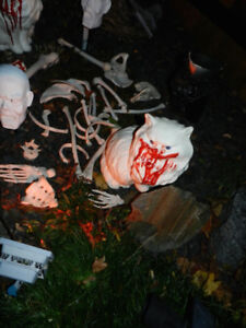 Halloween Graveyard ZOMBIE CATS Warning Please DO NOT Feed!