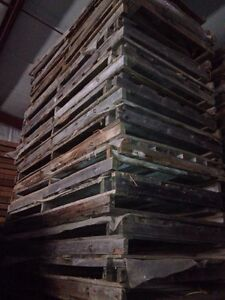 4x4 & 4x8x4 pallets for sale London Ontario image 2