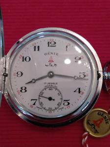Don't Miss It - Genie Swiss 17 jewels Incabloc Mechanical Watch