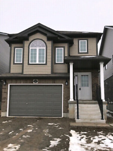 Doon south brand new house for rental