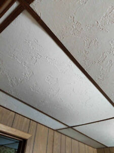 Ceiling Tile and Framing
