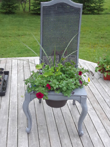 plants in a chair, pansies, violas, geraniums and creeping jenny