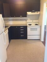 Fully renovated two bedroom available immediately